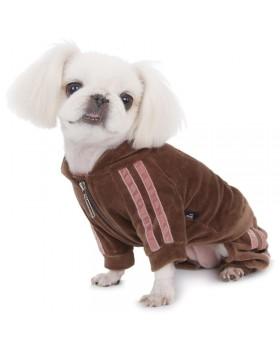 053 PA-OR Велюровый спортивный костюм для собак