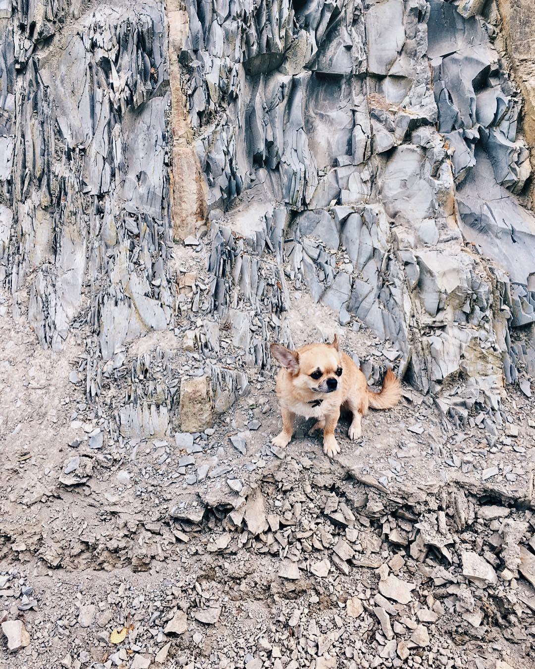 Прогулка Дени по скалам Северного Кавказа