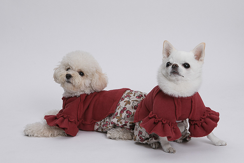 туника для собак с рукавами буфами
