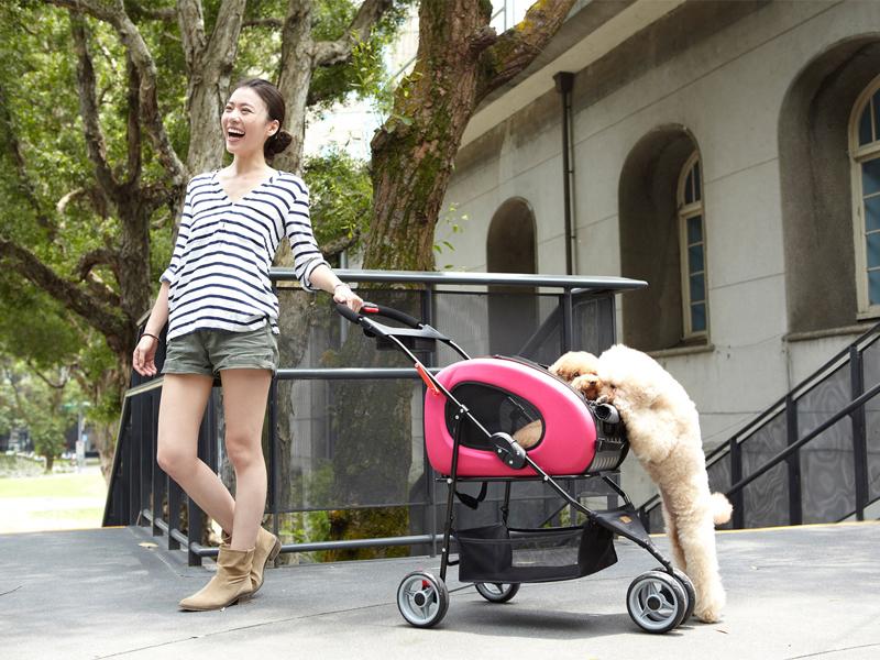 коляска для собак