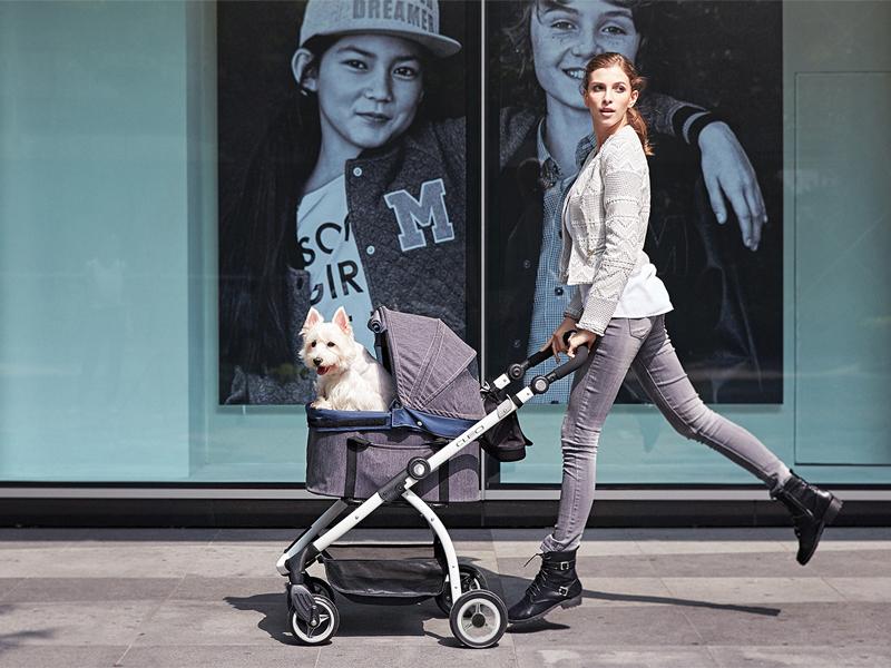 коляска для прогулок с собакой