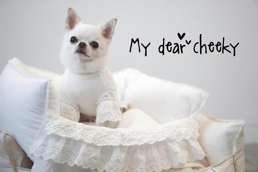 Лежанка для собаки Louisdog