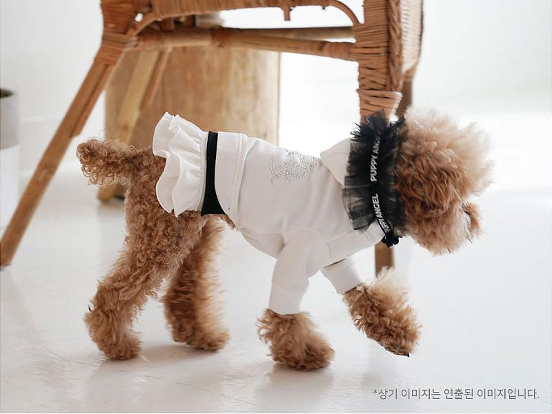платье с капюшоном для собачки