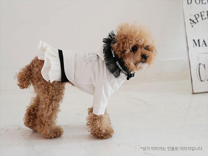 платье для собаки в дог бутик