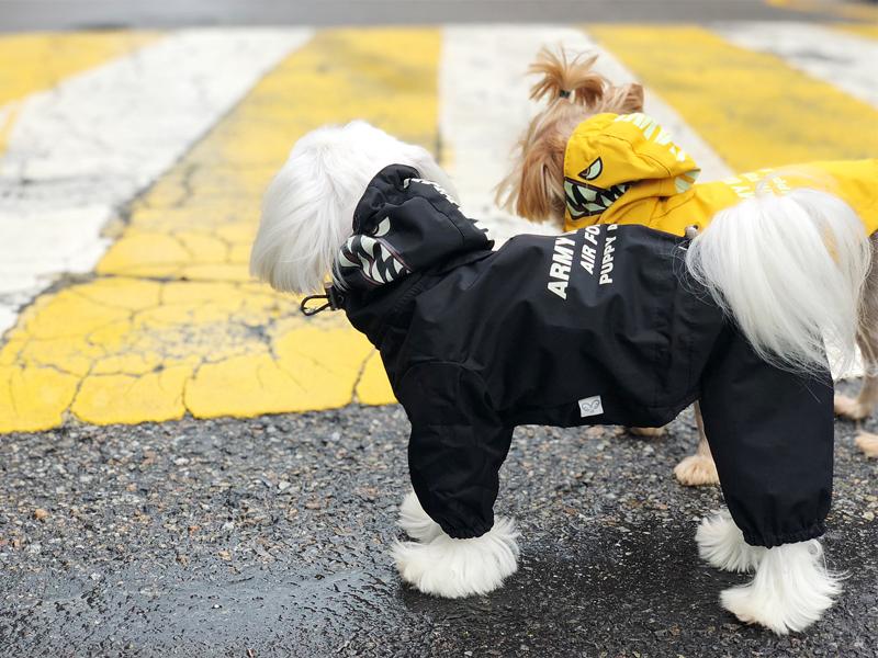 дождевик для собак светоотражатели