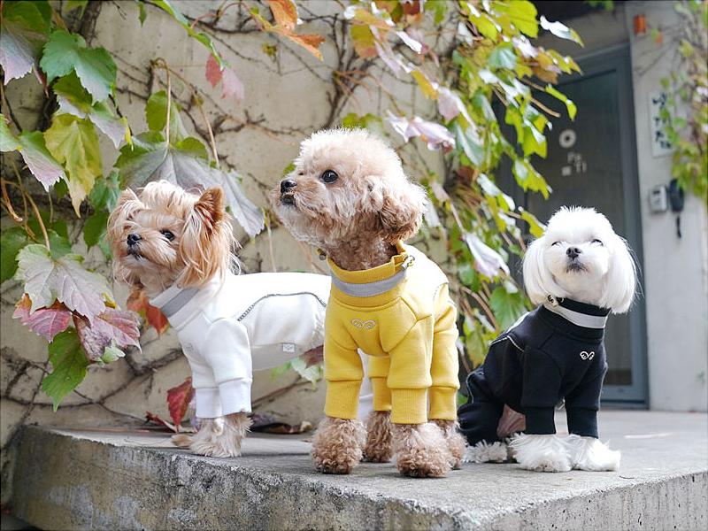 Флисовый комбинезон для собак