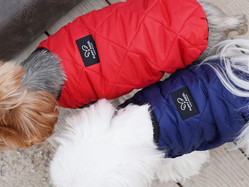 жилетка для собаки