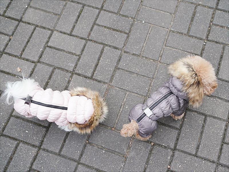 комбинезон для собак застежка на спинке