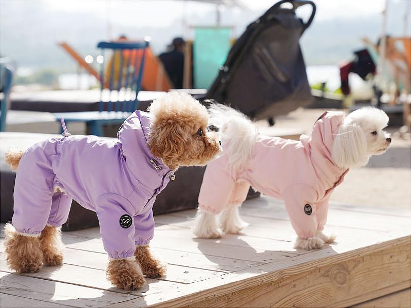комбинезон для собаки на меху
