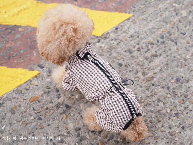 пыльник для собаки дог бутик