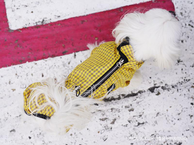 дождевик для гламурных собак