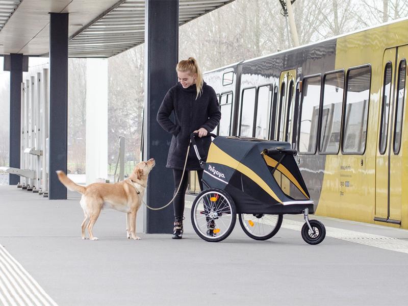 коляска для большой собаки