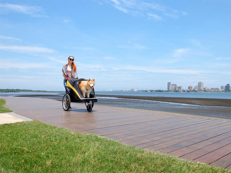 коляска для собаки