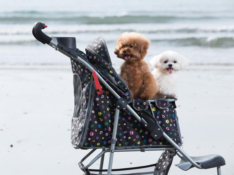 собака в коляске купить в догбутик