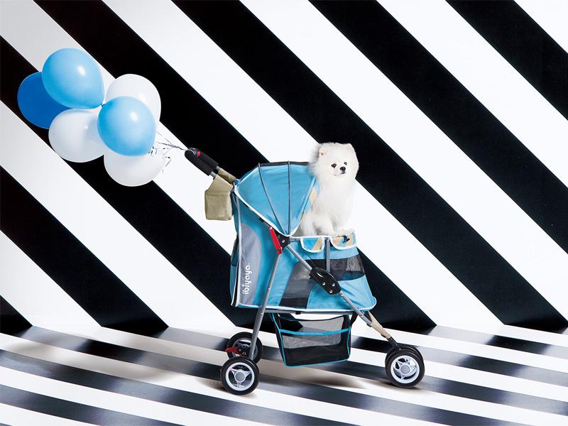 коляска для собак голубая