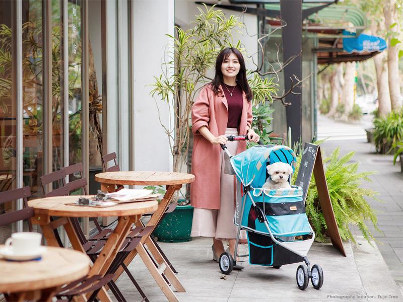 коляска для маленьких собак