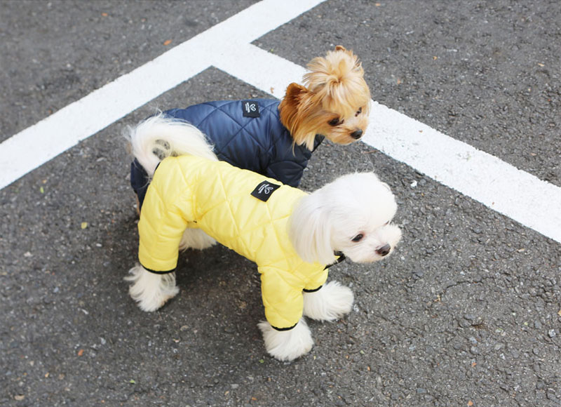 Комбинезон для собаки Стежка Puppy Angel