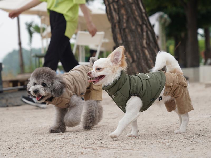куртка для собак в стиле милитари